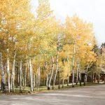 CreeksideChalets-columbia-fall
