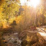 CreeksideChalets-fall-bench-wide
