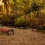 CreeksideChalets-fall-red-bench