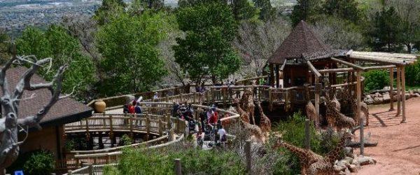 cheyenne mtn zoo